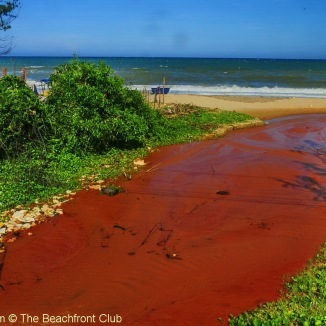 Vietnam_Phan_Thiet__South_beach_MM_Resort_6497_1